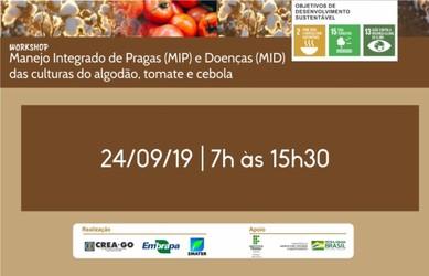 [noticia: workshop-sobre-mip-e-mid-de-algodao-tomate-e-cebola-e-realizado-em-morrinhos] - 01.jpg
