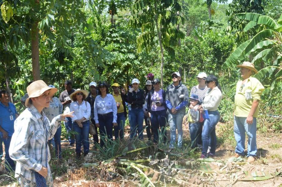 [noticia: workshop-sistemas-agroecologicos-de-producao-e-realizado-em-niquelandia-2] Profissionais do Sistema, produtores rurais e acadêmicos participam de atividades práticas - AGROECOLOGIA_NIQUELANDIA_5.jpg